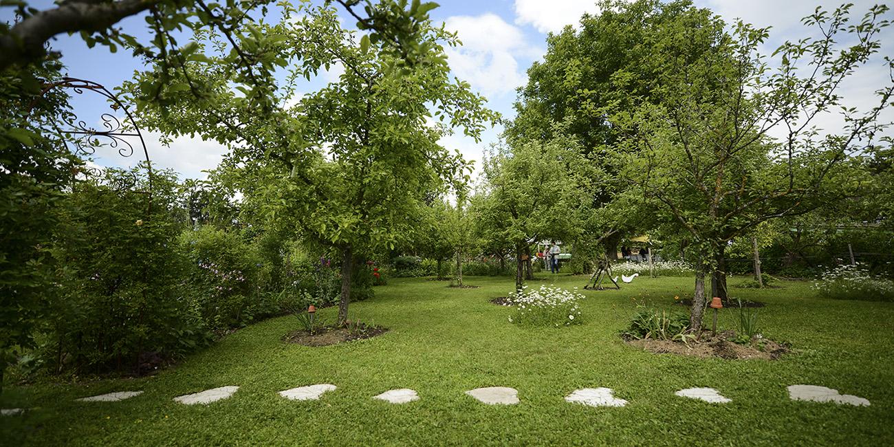 gartenplanung schaugarten adam 39 s garden. Black Bedroom Furniture Sets. Home Design Ideas
